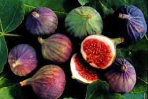 فوائد التين للبشرة والشعر والصحة العامة