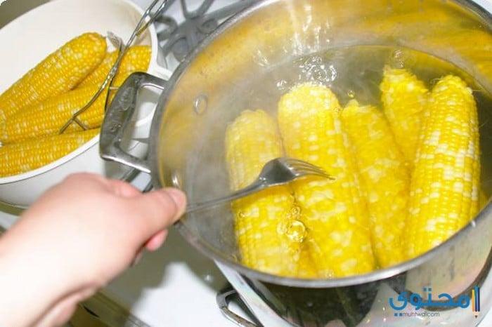 سلق الذرة الصفراء