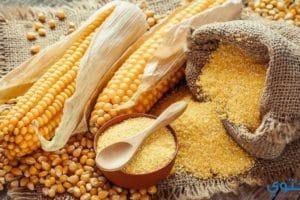 فوائد الذرة للبشرة والصحة وقيمته الغذائية
