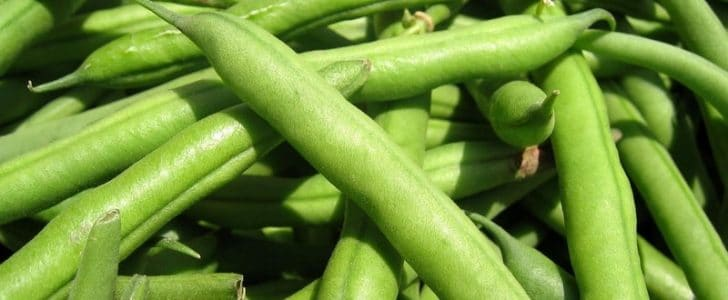 فوائد الفاصوليا الخضراء للصحة والحامل والتخسيس