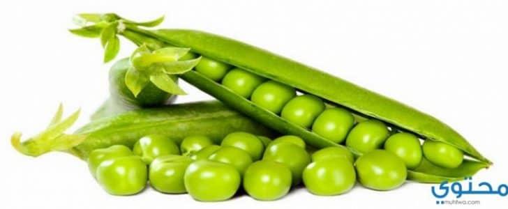 فوائد وأضرار الفول الأخضر وأهميته للحامل