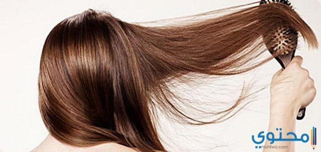 طريقة فرد الشعر بالنشا والزيت