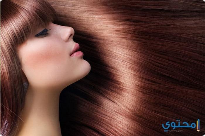 كيفية استخدام زيت الزيتون لتطويل الشعر