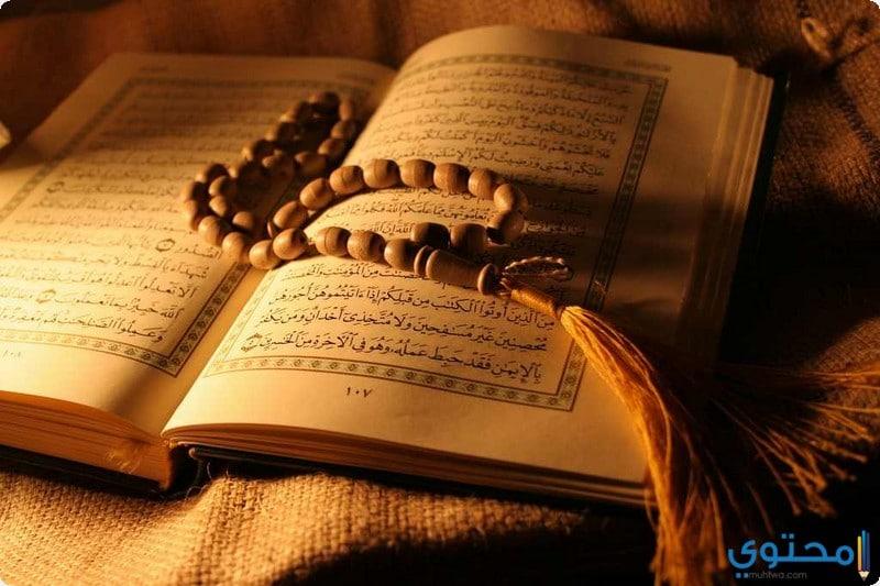 فوائد قراءة القرآن الكريم يوميا