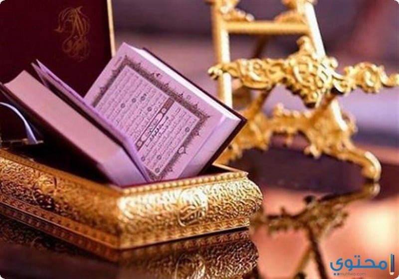 أجر قراءة القرآن الكريم