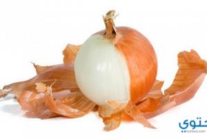 فوائد قشر البصل للجسم