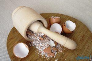 فوائد وأستخدامات قشر البيض