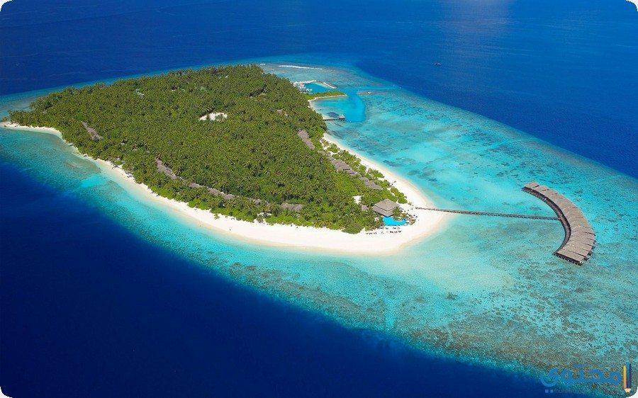 جزيرة فيليثيو