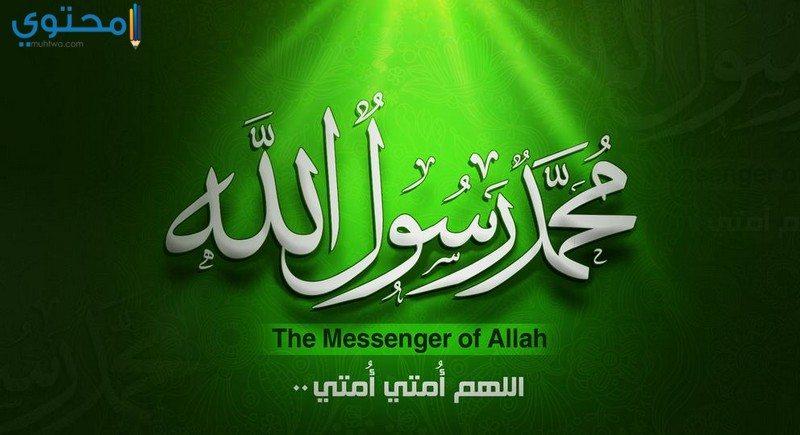 ولادة النبي محمد صلى الله عليه وسلم