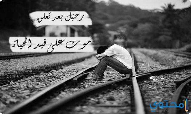 قصص حب مؤلمة
