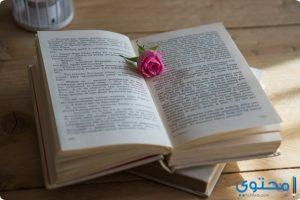 قصص حب واقعية