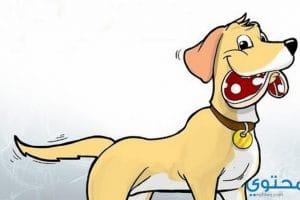 قصص حلوة للاطفال الصغار (قصة اللص والكلب)