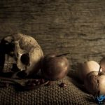قصص عالم الاشباح والجن