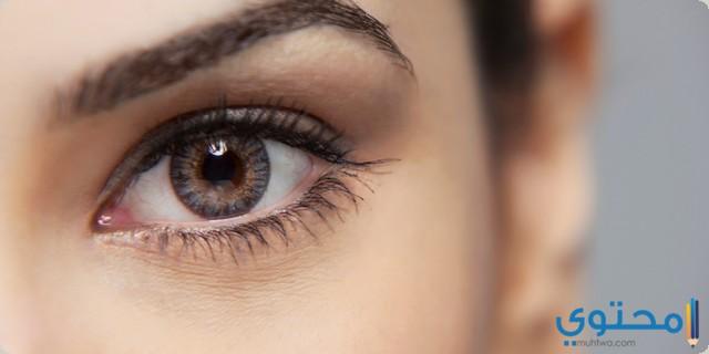 احتياطات عند استخدام قطرة عين بيتا اوفثيول