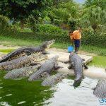 اهم الاماكن السياحية فى ملاكا ماليزيا