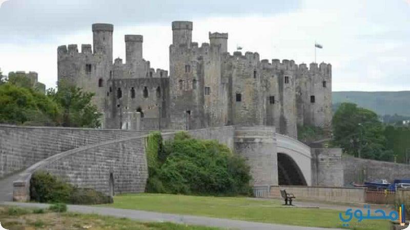 قلعة كنوي