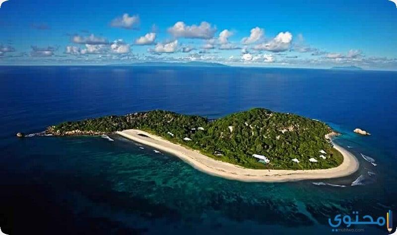 جزيرة كوزين