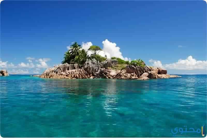 جزيرة كوفى