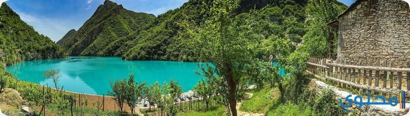 بحيرة كومان البانيا
