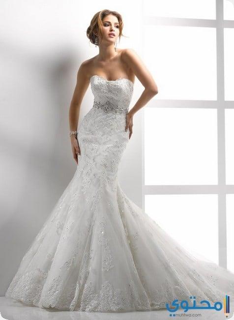 كيف تختارين فستان زفاف مناسب لشكل الجسم - موقع محتوى