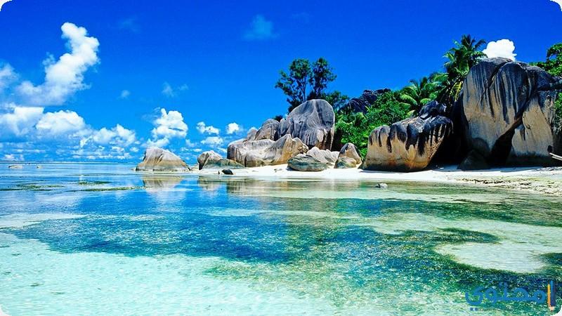 جزيرة لاديغ