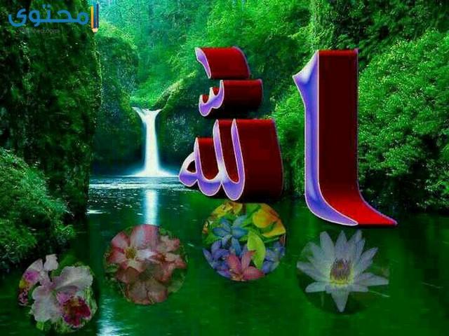 لفظ الجلالة الله