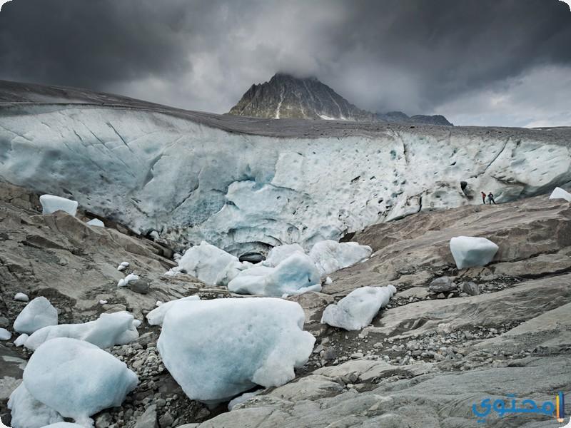 نهر أليتش الجليدي