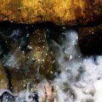 ماهو سبب تسمية ماء زمزم