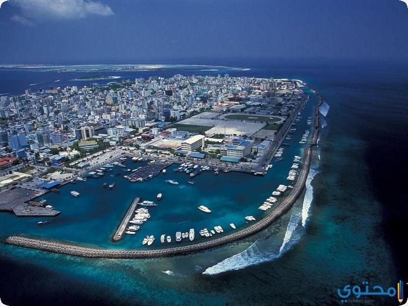 جزيرة مالية
