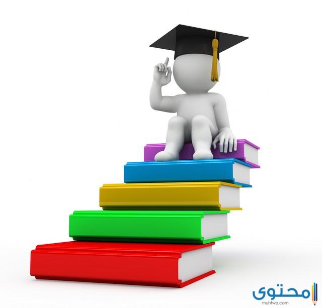 نظام الجامعات الجديد