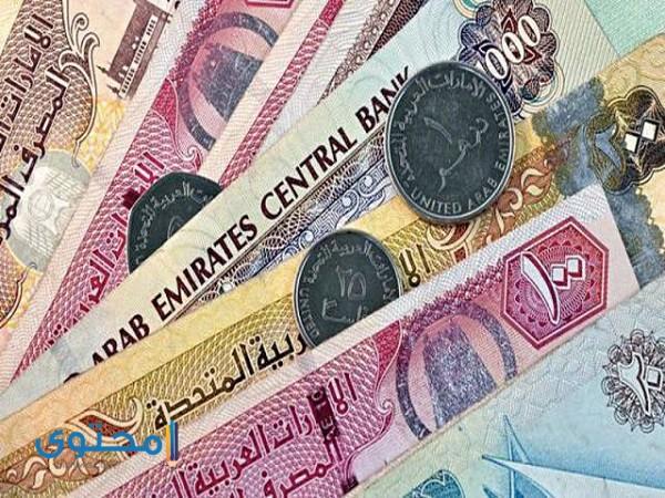 ما هو اسم عملة الإمارات