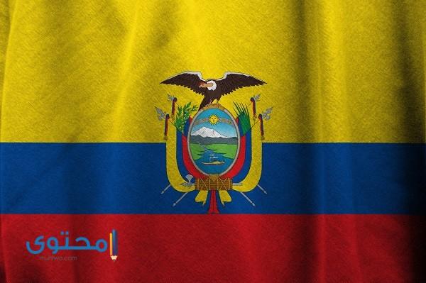 ما هي عملة الإكوادور