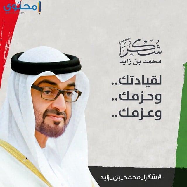 سمو الامير محمد بن زايد
