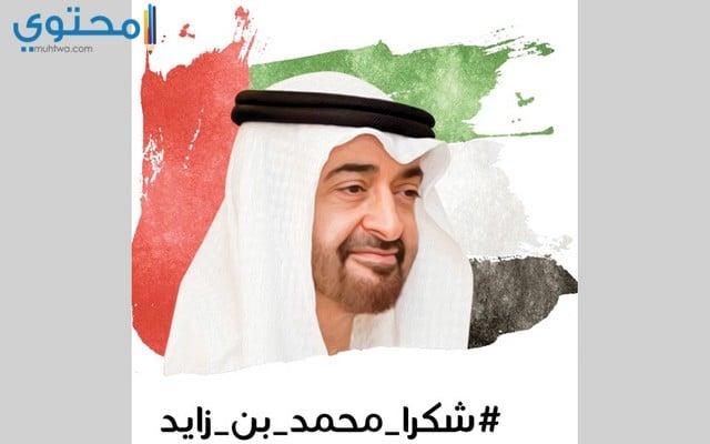 صور محمد بن زايد 2020