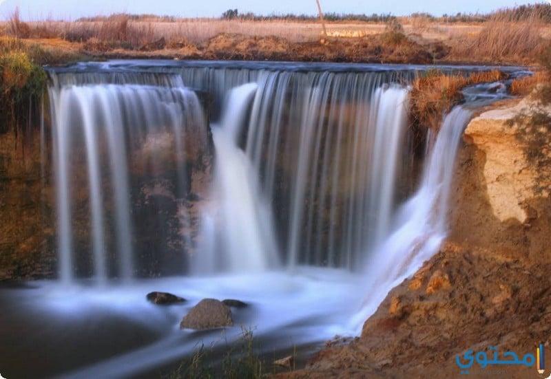 محمية وادي الريان03