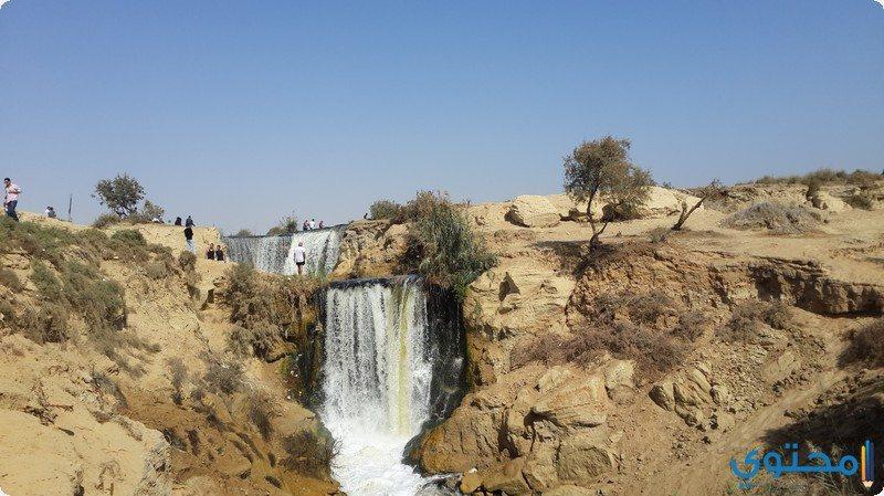 محمية وادي الريان14