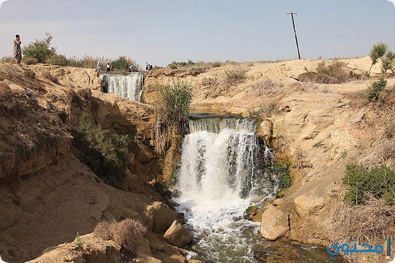 محمية وادي الريان
