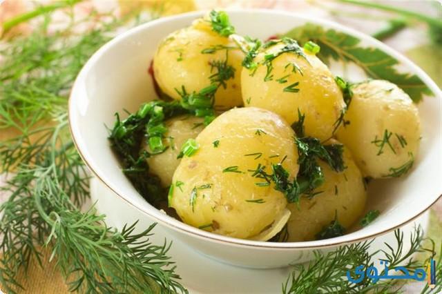 مدة هضم البطاطس المسلوقة في المعدة