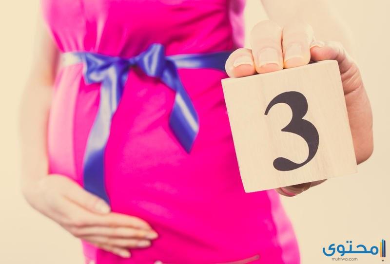 الجنين في الشهر الثالث