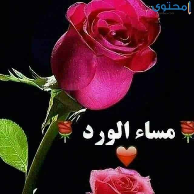 رمزيات مساء الورد للحبيب