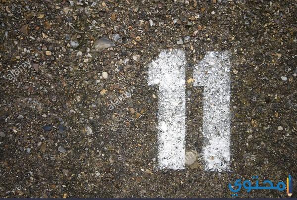 صفات أصحاب مسار الحياة رقم 11 والعمل