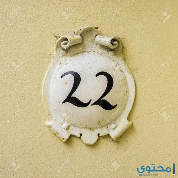 صفات أصحاب مسار الحياة رقم 22 والحب