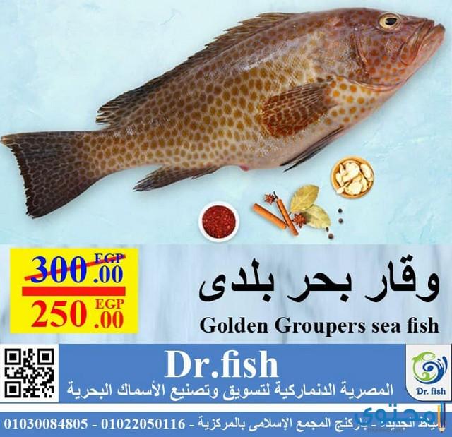 مطاعم أسماك في دمياط