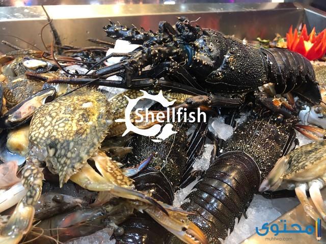 مطعم سمك في الغردقة
