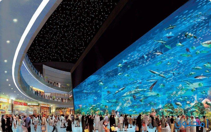 معالم وصور السياحة في دبي معالم-دبي02.