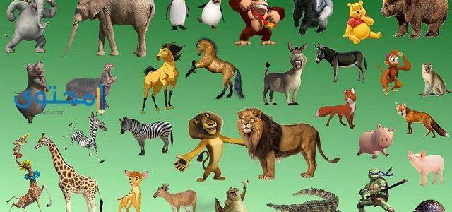 تفسير رؤية الحيوانات فى الحلم لإبن سيرين