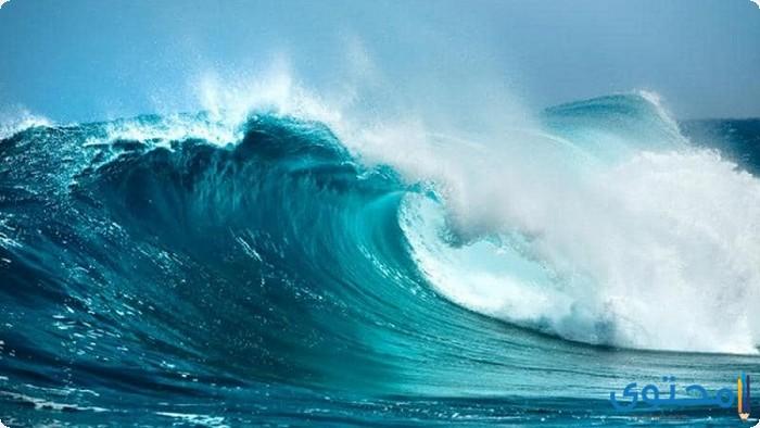 معلومات عن المحيطات الخمسة