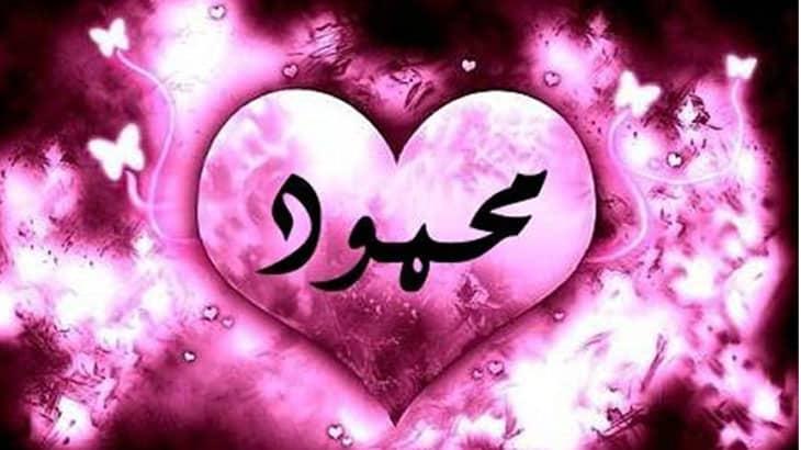 اسم محمود