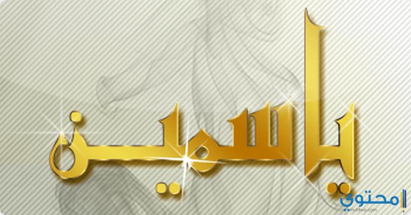 معني اسم ياسمين وصفات شخصيتها Yasmen موقع محتوى