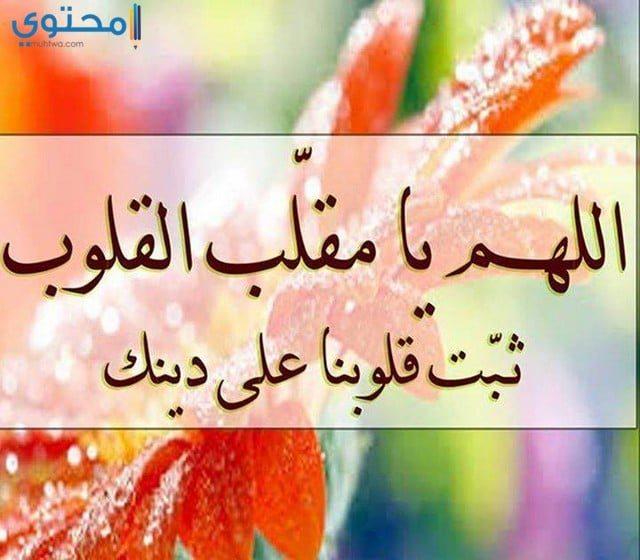 بوستات إسلامية مصورة